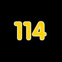 第114关