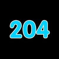 第204关