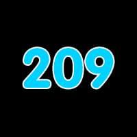 第209关