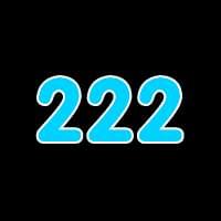 第222关