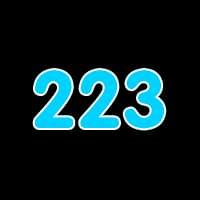 第223关