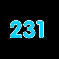 第231关