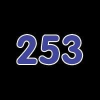 第253关
