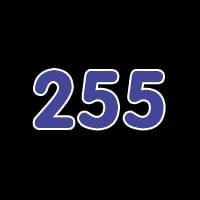 第255关