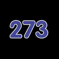 第273关