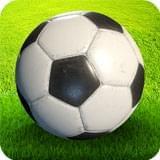 世界足球冠军赛