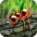 蚂蚁生存模拟器-v1.01
