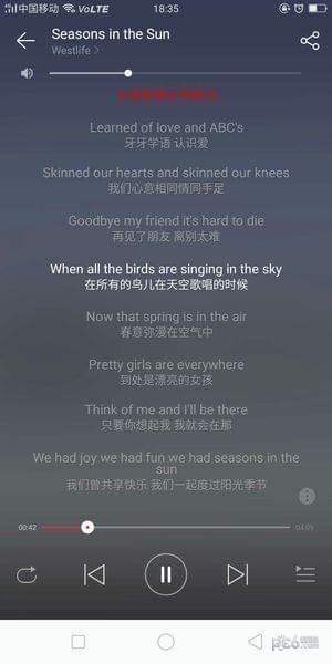 网易云音乐英文歌怎么显示中文 网易云音乐怎么看歌词翻译