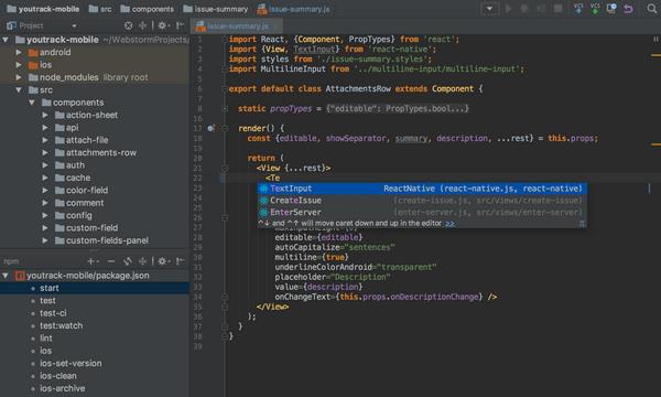 JetBrains WebStorm(前端开发软件)