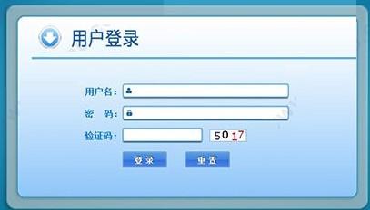 新型农村合作医疗管理系统