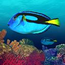 深海潛水模擬Mac版