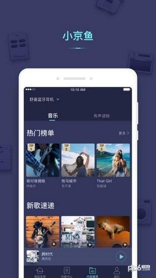 小京鱼app下载