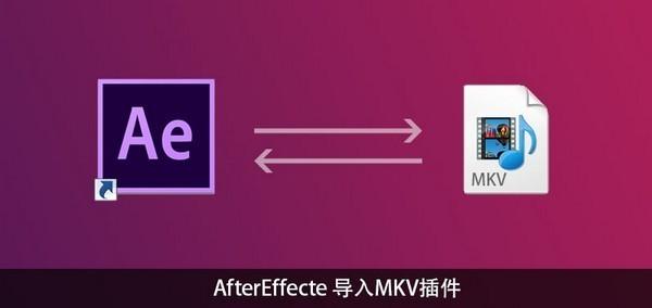 AE导入MKV插件