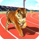 野生动物赛跑
