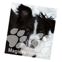MagicWatermarks 3 Mac版
