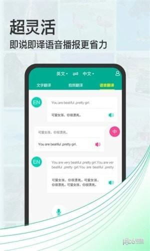 泰文拍照翻译app